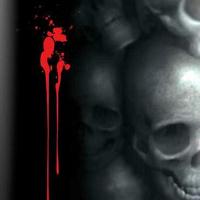 Matthew Amey-Skull Project Book
